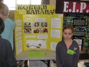 Science Fair Parkinson